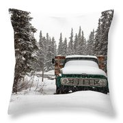 Cold Storage Throw Pillow