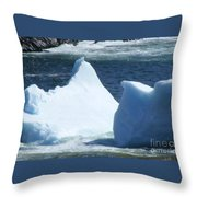 Cold Visitors  Throw Pillow