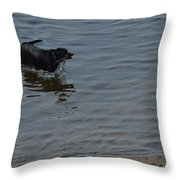 Cold Water Fetch Throw Pillow