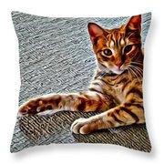Cole Kitty Throw Pillow
