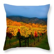 Colibri Morning Throw Pillow