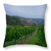 Colibri Vineyards Throw Pillow