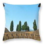 Coliseum At Pompeii Throw Pillow