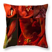 Collage - Amaryllis - Red 01- Elena Yakubovich Throw Pillow