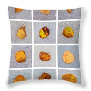 Collage - Leaves On Granite 1 Throw Pillow