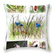 Collage Of Indigos 10 Throw Pillow