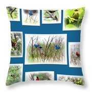Collage Of Dauphin Island 22 Throw Pillow