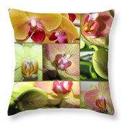 Collage Orchids 01yellow Green - Elena Yakubovich Throw Pillow