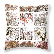 Collage The Beauty Of Rowan Throw Pillow