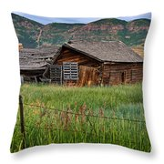 Collapsed Log House In Utah Throw Pillow