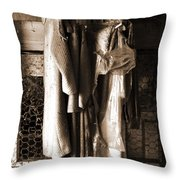 Collecting Dust Throw Pillow
