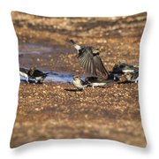 Collecting Mud Throw Pillow by Douglas Barnard