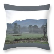 Collecting The Hay Throw Pillow