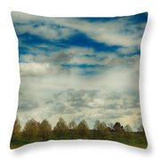 Collecting Thoughts Throw Pillow