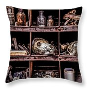 Collection At Techatticup Gold Mine-alt Process Throw Pillow