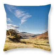 College Valley And Lambden Burn Throw Pillow