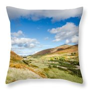 College Valley Throw Pillow