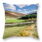 College Valley Forest Throw Pillow