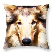 Collie Dog Art - Sunshine Throw Pillow by Sharon Cummings