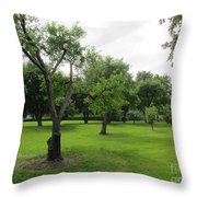 Colonial Apple Orchard Throw Pillow