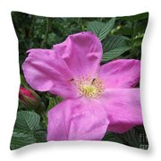 Colonial Rose - Floral Throw Pillow