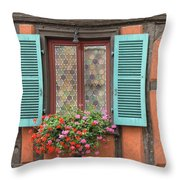 Color Abounds Throw Pillow