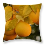 Super Bright Oranges On A Branch Throw Pillow