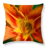Color Blast Throw Pillow