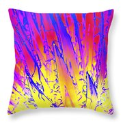 Color Burst Agave Throw Pillow