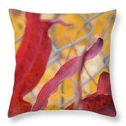 Color Containment  Throw Pillow