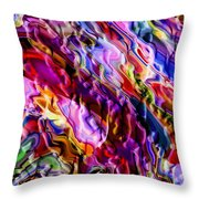 Color Evolution Throw Pillow