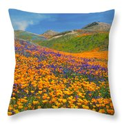 Color Filled Hills Throw Pillow