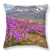 Color From Chaos - Mount St. Helens Throw Pillow