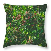 Color Harmony Throw Pillow