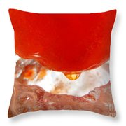 Color In Ice Series 5 Throw Pillow