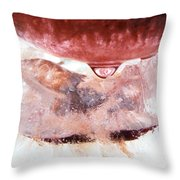 Color In Ice Series 6 Throw Pillow