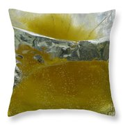 Color In Ice Series 63 Throw Pillow