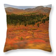Color In Motion Throw Pillow