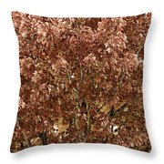 Color In The Tree 04 Throw Pillow