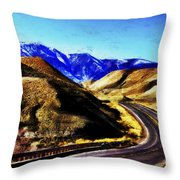 Color My Road Throw Pillow