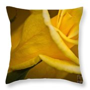 Color Of Friendship Throw Pillow