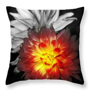 Color Of Life Throw Pillow by Karen Wiles