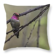 Color On A Branch Throw Pillow