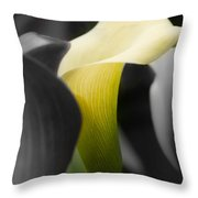 Color On Black And White Throw Pillow