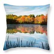 Color On Grist Millpond Throw Pillow by Michael Blanchette