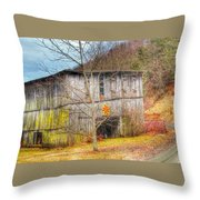 Color On The Dirt Road Throw Pillow