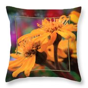 Color Pizzaz With Collaged Textures Throw Pillow