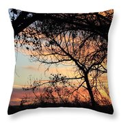 Color Through The Trees Throw Pillow