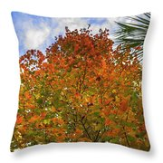 Color To The Sky Throw Pillow