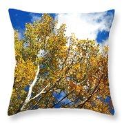 Colorado Aspens And Blue Skies Throw Pillow